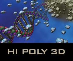 Hi Poly 3D